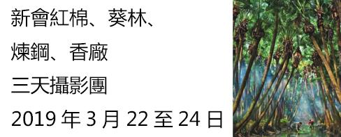新會葵林+煉鋼之旅2019年3月22晚至24日